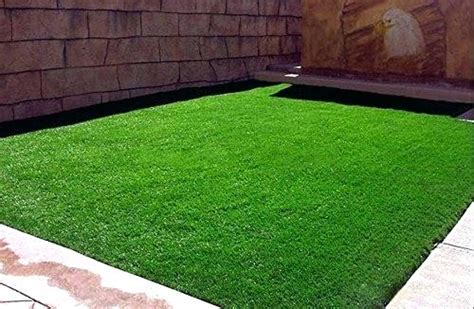 Empire Grass Seed Home Depot Zoysia For Sale El Toro Plugs