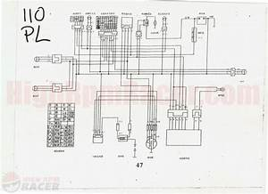 2005 Panther 110 Wiring Diagram