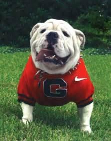 Georgia Bulldogs Football
