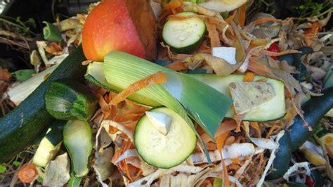 was darf auf den kompost was darf auf den komposter und was nicht alternativ gesund leben de