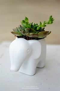 DIY Toy Elephant Succulent Planter Make It and Love It