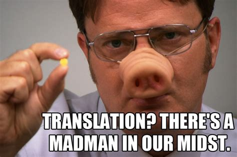 206 Best Images About Dwight Schrute On Pinterest
