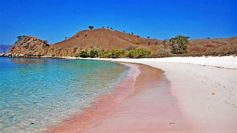 Fast Boat From Lombok To Labuan Bajo by Wonderful Komodo Island 3 Days And 2 Nights Fast Boat