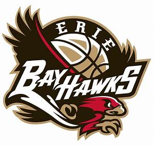 Erie BayHawks Primary Logo (2008) - A black and red hawk ...
