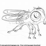 Coloring Fly Cartoon Getcoloringpages Alphabet Letter Floral Colouring Adult Sheet Mythical Monster sketch template