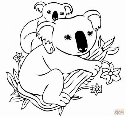 Koala Coloring Pages Mother Printable
