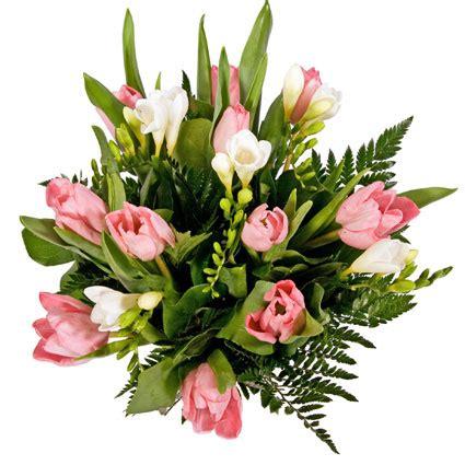 Ziedu piegāde | Ziedi: Rozā tulpes un baltas frēzijas