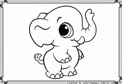 Elephant Coloring Pages Drawing Elephants Printable Chloe