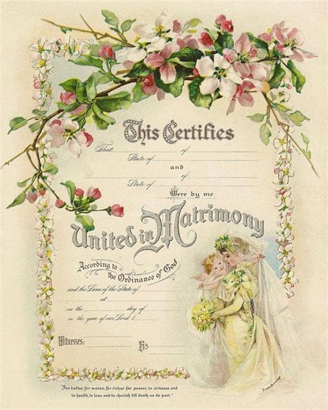 family trees images  pinterest vintage images