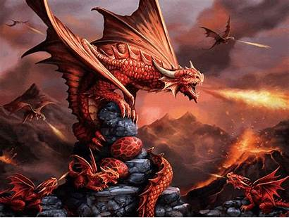 Dragon Fire Anne Stokes Puzzle Jigsaw Similar