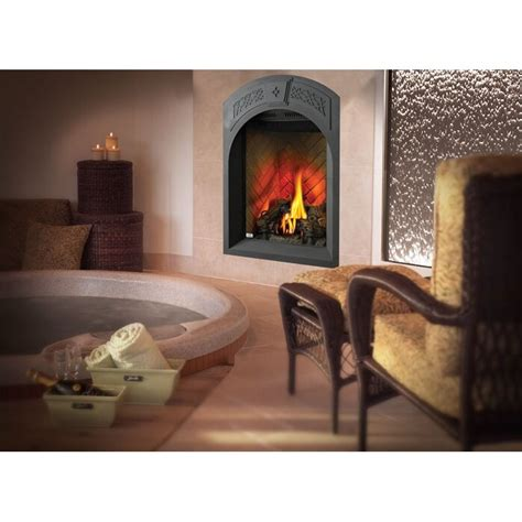 Gas Wall Fireplace by Napoleon Tureen Direct Vent Wall Mount Gas Fireplace Wayfair