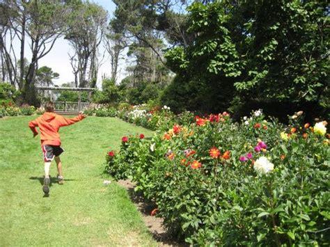 wedding garden picture of mendocino coast botanical