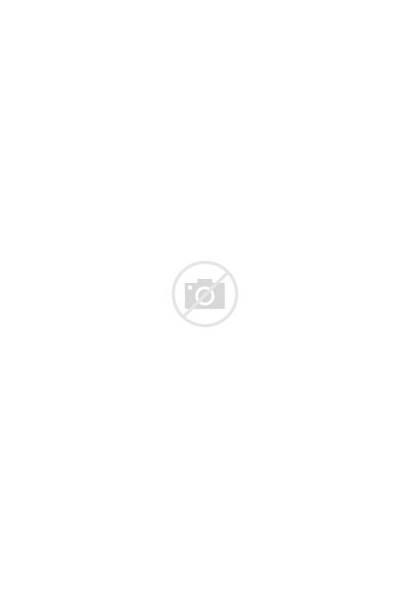 Needle Foxy Mr Felting Kit Fabulous
