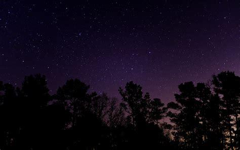 summer  sleep   stars   stellar