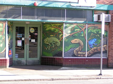 tropical hut portland pet store full line reptiles breeding