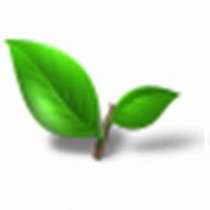 Tea plant leaf Icon | Tea Iconset | Toma4025