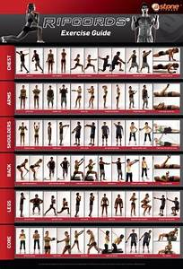 Low Price Ripcords Exercise Guide Poster