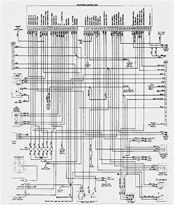 Cat C7 Acert Engine Fuel Pump Diagram  Wiring  Wiring Diagram Images