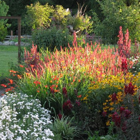 Who Sang Garden by Make Your Garden Sing With Perennials Slide 2 Ifairer