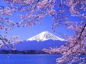 Mount Fuji Japan - Piece Of Highest Range
