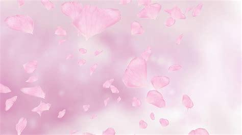 Pink Roses Background Pink Petals Background Www Pixshark Images