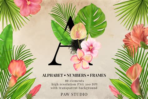 tropical graphic letters numbers floral frames monogram  paw studio thehungryjpegcom