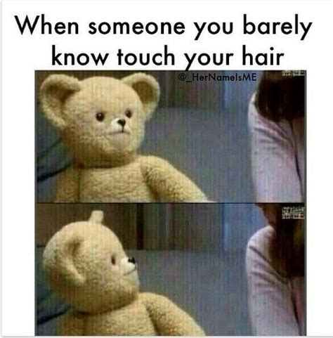 Snuggle Bear Meme - best 25 funny hair quotes ideas on pinterest hair sayings ex quotes funny and lip gloss quotes