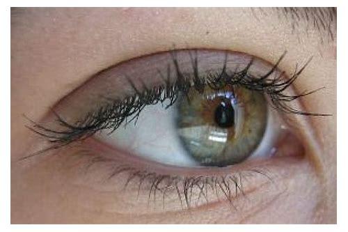 baixar de fotos de olhos verdes lindos