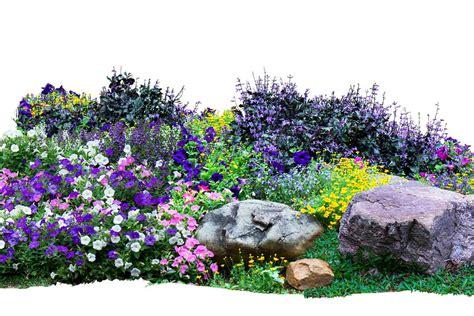 giardino roccioso progetto come fare un giardino roccioso in casa