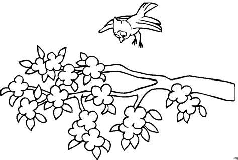 vogel mit ast ausmalbild malvorlage comics