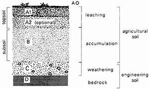 Soil Profiles