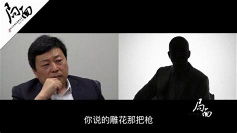 王志安为什么叫王局是个怎样的人,王志安为什么离开央视现在干嘛_天涯八卦网