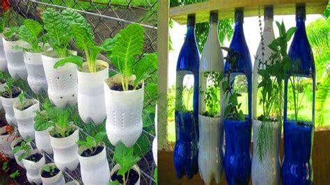 Ideas Using Plastic Bottles by Inspired Photo Of Plastic Bottle For Vegetable Garden