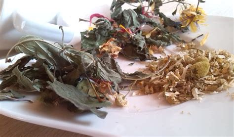 teesorten und ihre wirkung die vorz 252 ge der drei besten teesorten hotel feldhof