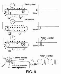 E Stim Schematic  U2013 The Wiring Diagram  U2013 Readingrat Net