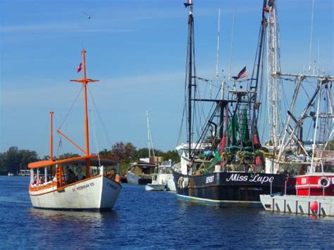 Boat Rs Near Tarpon Springs Fl by Beautiful Tarpon Springs A Must See If You Are On The