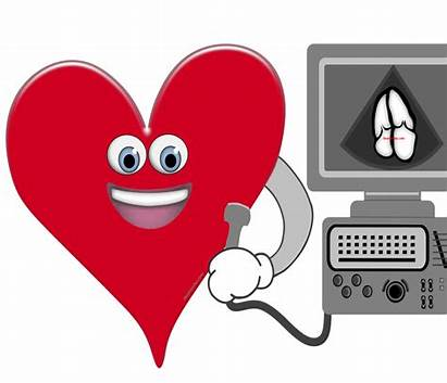 Echocardiography Agreement User Machine Instructions Resources Subject