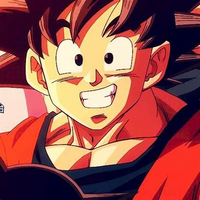 Goku Son 2048