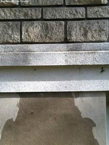 Nettoyer Terrasse Carrelage Eau De Javel : nettoyer mur exterieur javel top nettoyer mur exterieur noirci nettoyer mur exterieur noirci ~ Melissatoandfro.com Idées de Décoration