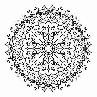 Mandala Vector Decorative Background Pattern Rose Patterns