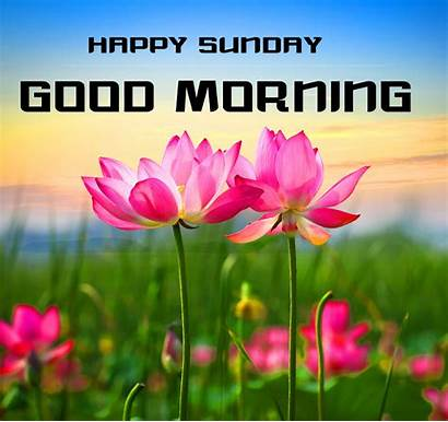 Morning Sunday Wishes Forever Each David Poems