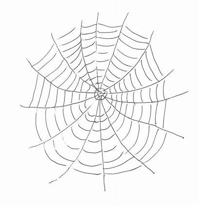 Spider Web Coloring Printable Pages Websites Stencil