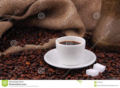 Share the best gifs now >>>. Arabian fried coffee beans stock photo. Image of drink - 4780464