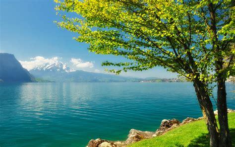 Spring Scenery 6392 3840 X 2400 Wallpaperlayercom