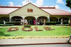 Visit the Dole Plantation | Oahu, Hawaii - things to do ...