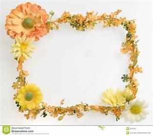 Orange flower frame stock image. Image of background ...