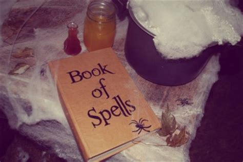 book  spells fun family crafts
