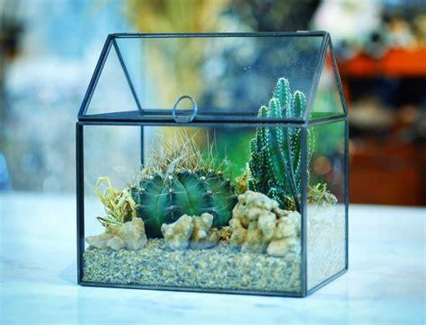 #terrarium #สวนขวด #สวนในขวด #สวน #สวนขวดโหล #tinyworld #ทำสวน #สวนในโหล #บ้านและสวน #ตกแต่งบ้าน ...