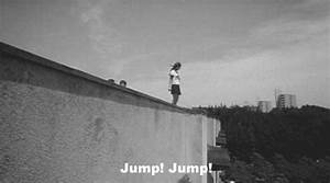 Suicide Gif Funny Gifs Suicide Cat Jump GIF - LowGif