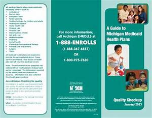 A Guide To Michigan Medicaid Health Plans